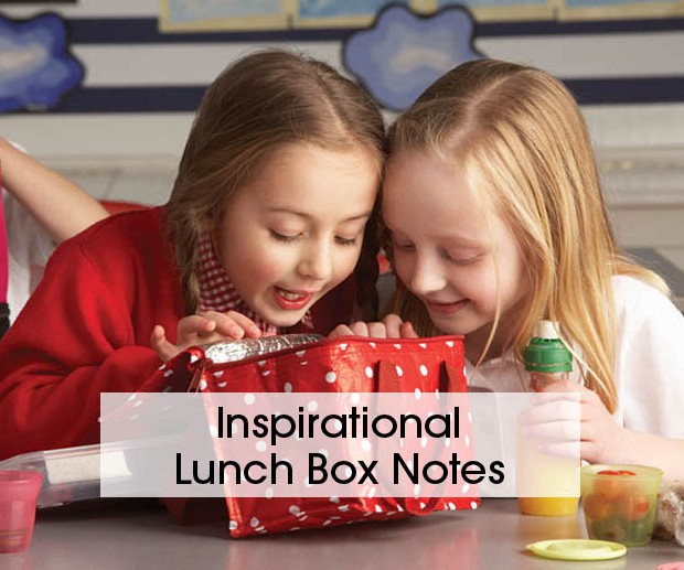 Cover lunch boxes