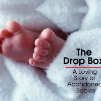 cover the drop box movie